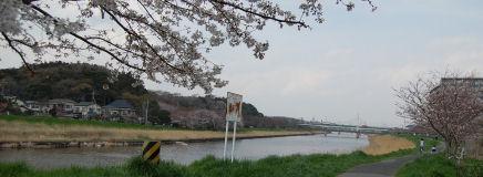 200328-machi.1.jpg