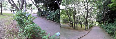 200627-2.machi.jpg