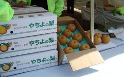 201011-machi.7.jpg