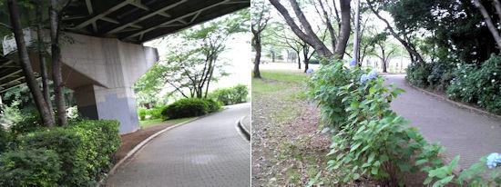 240717-11.machi.jpg