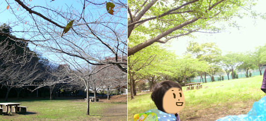 240717-15.machi.jpg
